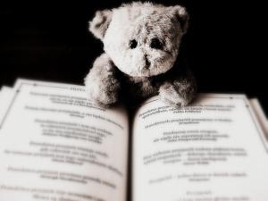 bear-422369_640