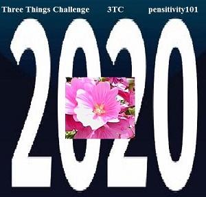 3tc 2020-logo