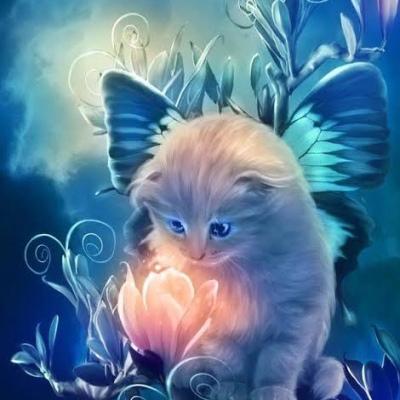 Kitty Katz